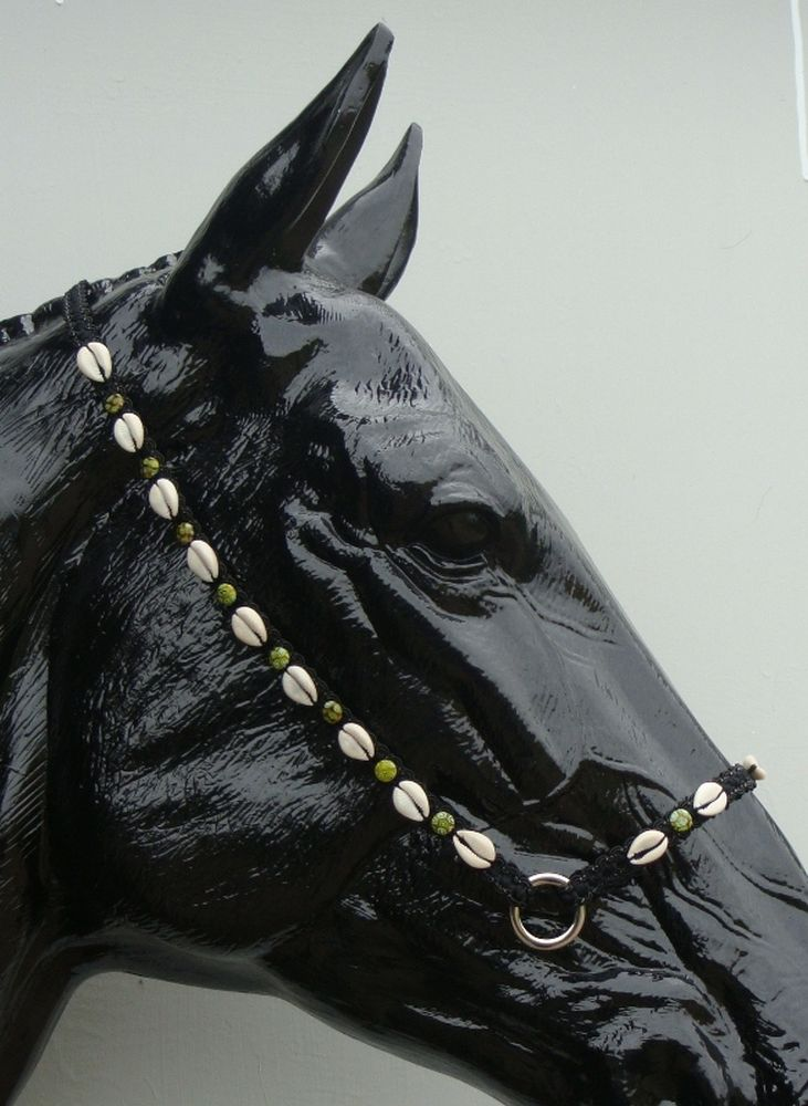 Showbridle arbian Shells Yellow