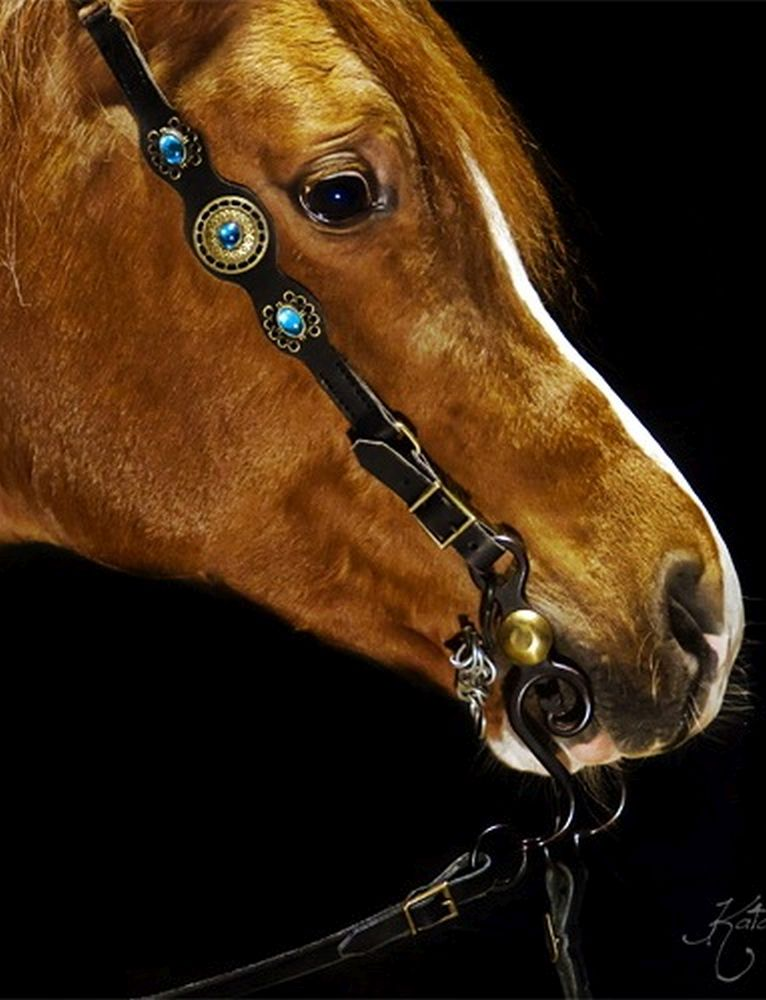 Bridle BLUE Baroque