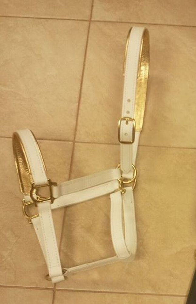 White lined halter
